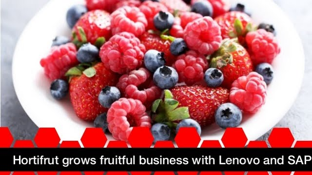 Fast Access to Information is the Key to Growing a Berry Business